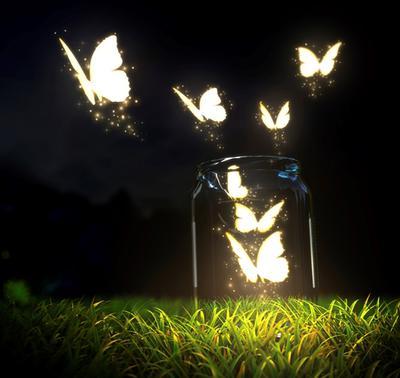 <tt>Jar of butterflies by Vadmary via Istock</tt>