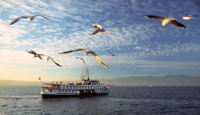 <tt>Serkan GUL @ freeimages.com</tt>