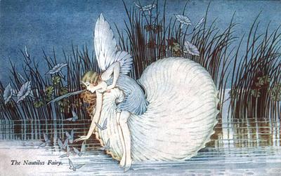 <tt>The Nautilus Fairy by Ida Rentoul Outhwaite</tt>